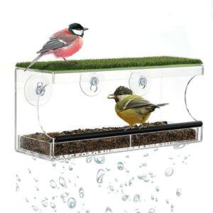 Window Bird Feeder, With Strong Suction Cups