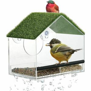 Window Mounted Bird Feeder, With Strong Suction Cup